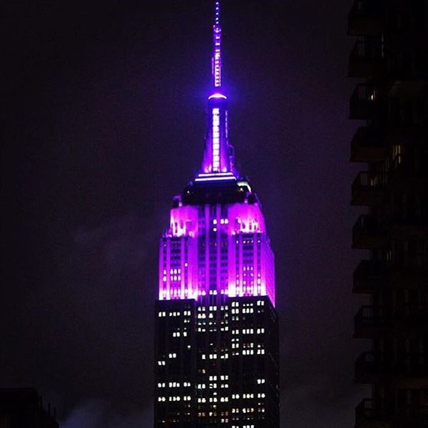 Prince purple Empire State Building